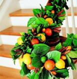 Shen Men Feng Shui 10 Feng Shui Decorating Ideas That Can Stay Up Past The Holidays